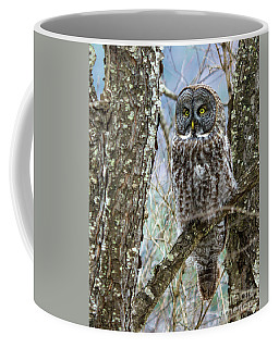 I See It - Great Gray Owl Coffee Mug