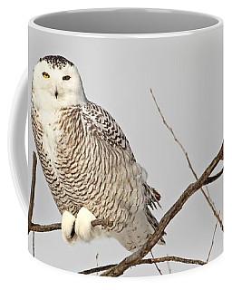 I Spy With My Yellow Eye Coffee Mug