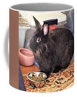 I Think I Just Heard Santa Coffee Mug
