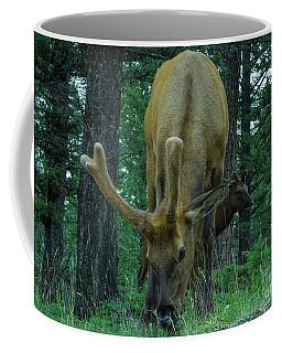 I Want Some Coffee Mug