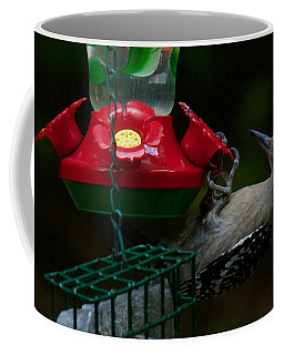 I Want To Be A Hummingbird Coffee Mug by Robert L Jackson