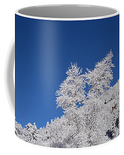 Ice Crystals Ute Pass Cos Co Coffee Mug