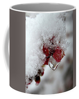 Coffee Mug featuring the photograph Ice Drip by Melinda Blackman