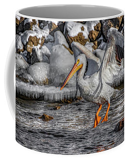 Ice Jump Coffee Mug