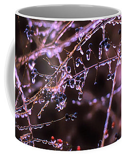 Coffee Mug featuring the photograph Ice Storm by Richard Goldman