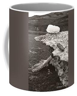 Iceberg Silo Coffee Mug