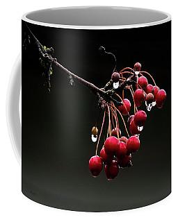 Iced Crab Apples Coffee Mug