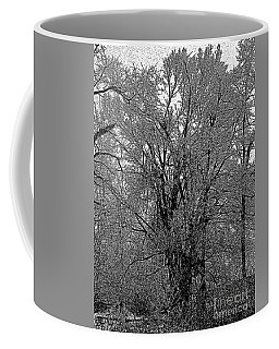 Iced Tree Coffee Mug by Craig Walters