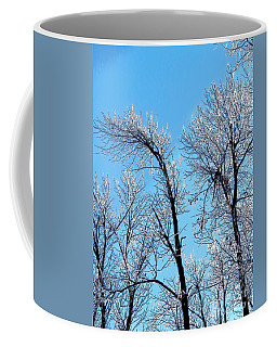 Iced Trees Coffee Mug by Craig Walters
