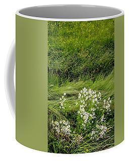 Icelandic Daisies Coffee Mug