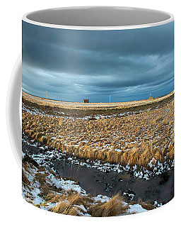 Coffee Mug featuring the photograph Icelandic Landscape by Dubi Roman