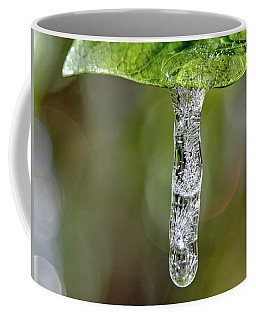 Icicle On Gardenia Leaf Coffee Mug by Ludwig Keck