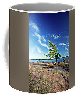 Iconic Windswept Pine Coffee Mug