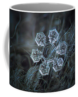Coffee Mug featuring the photograph Icy Jewel by Alexey Kljatov