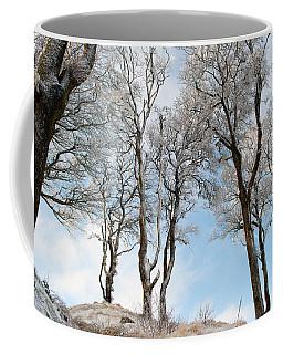 Icy Trees Coffee Mug