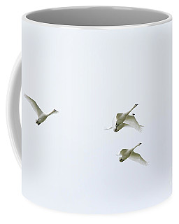 Coffee Mug featuring the photograph If I Had Wings - Swans In Flight by Jane Eleanor Nicholas