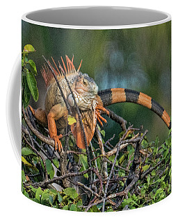 Coffee Mug featuring the photograph Iggy by Don Durfee