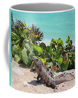 Iguana At Tulum Coffee Mug
