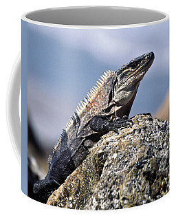 Iguana Coffee Mug by Sally Weigand