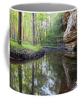 Illinois Canyon In Spring Starved Rock State Park Coffee Mug