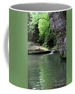 Illinois Canyon Summer Coffee Mug