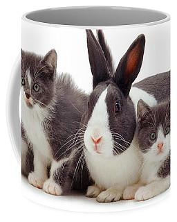I'm Bun Of The Family Coffee Mug