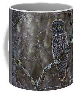 I'm Hungry- Great Gray Owl Coffee Mug