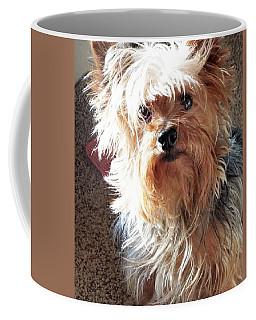 Im Hungry You Hungry? Coffee Mug