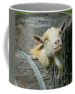I'm Lucy - I Like You Coffee Mug