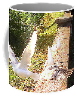 Image Included In Queen The Novel - Birds On Battery Park Wall Vermont Horizontal Crop Coffee Mug