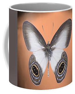 Image13 Coffee Mug