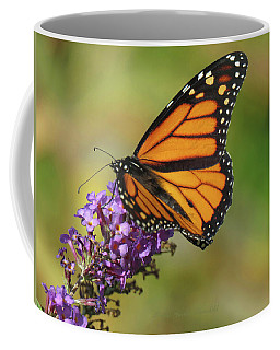 Autumn In The Garden - Monarch And Purple Floret - Nature Photography Coffee Mug