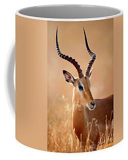 Impala Male Portrait Coffee Mug