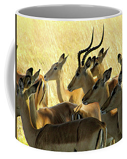 Impalas In The Plains Coffee Mug