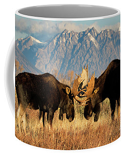 Coffee Mug featuring the photograph Impasse  by Aaron Whittemore