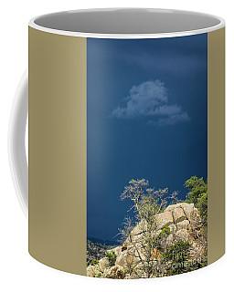 Impending Storm Coffee Mug