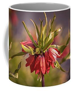 Imperial Crown #g3 Coffee Mug