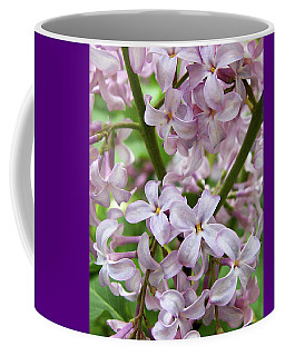 Coffee Mug featuring the photograph In A Sea Of Lilacs by Kathi Mirto