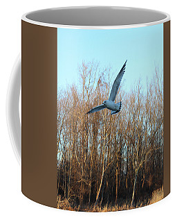 Coffee Mug featuring the photograph In Flight by Melinda Blackman