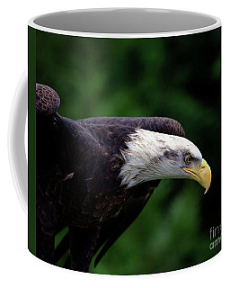 In For The Kill Coffee Mug by Stephen Melia