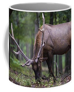 In Full Velvet Coffee Mug
