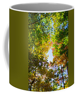 Coffee Mug featuring the photograph In Many Colors by Parker Cunningham