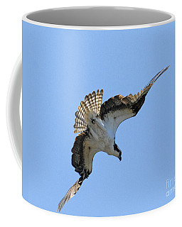 Coffee Mug featuring the photograph In The Dive by Alana Ranney