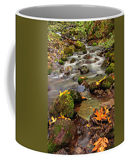 In The Forest In Fall Coffee Mug