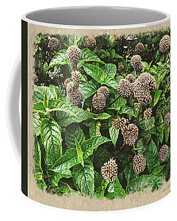 Coffee Mug featuring the photograph In The Highline Garden by Joan  Minchak