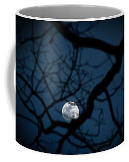 Coffee Mug featuring the photograph In The Light Of Night by Jessica Brawley