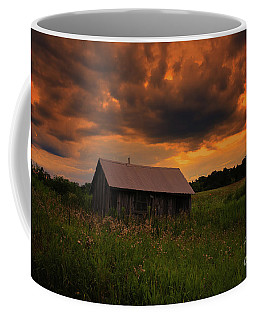 In The Midst Of Sunset Coffee Mug