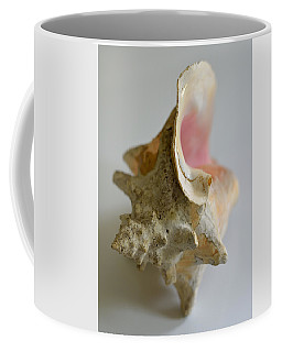 In The Next World 2017 Coffee Mug