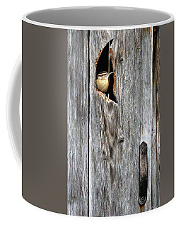 In The Outhouse Shed Coffee Mug