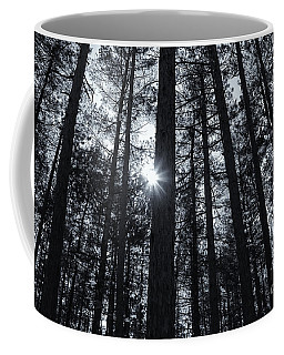 Coffee Mug featuring the photograph In The Pines  by Rachel Cohen